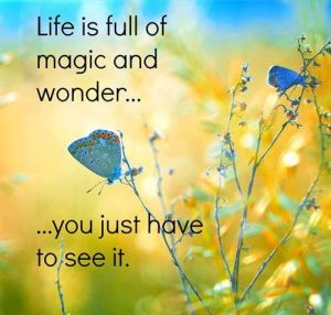 viata ca magie