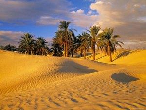 norul si duna de nisip